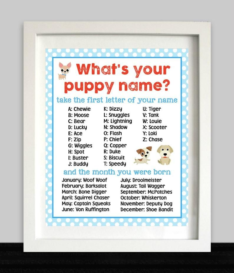 Puppy Birthday Party What S Your Puppy Name Puppy Etsy Puppy Birthday Parties Puppy Birthday Pet Adoption Birthday Party
