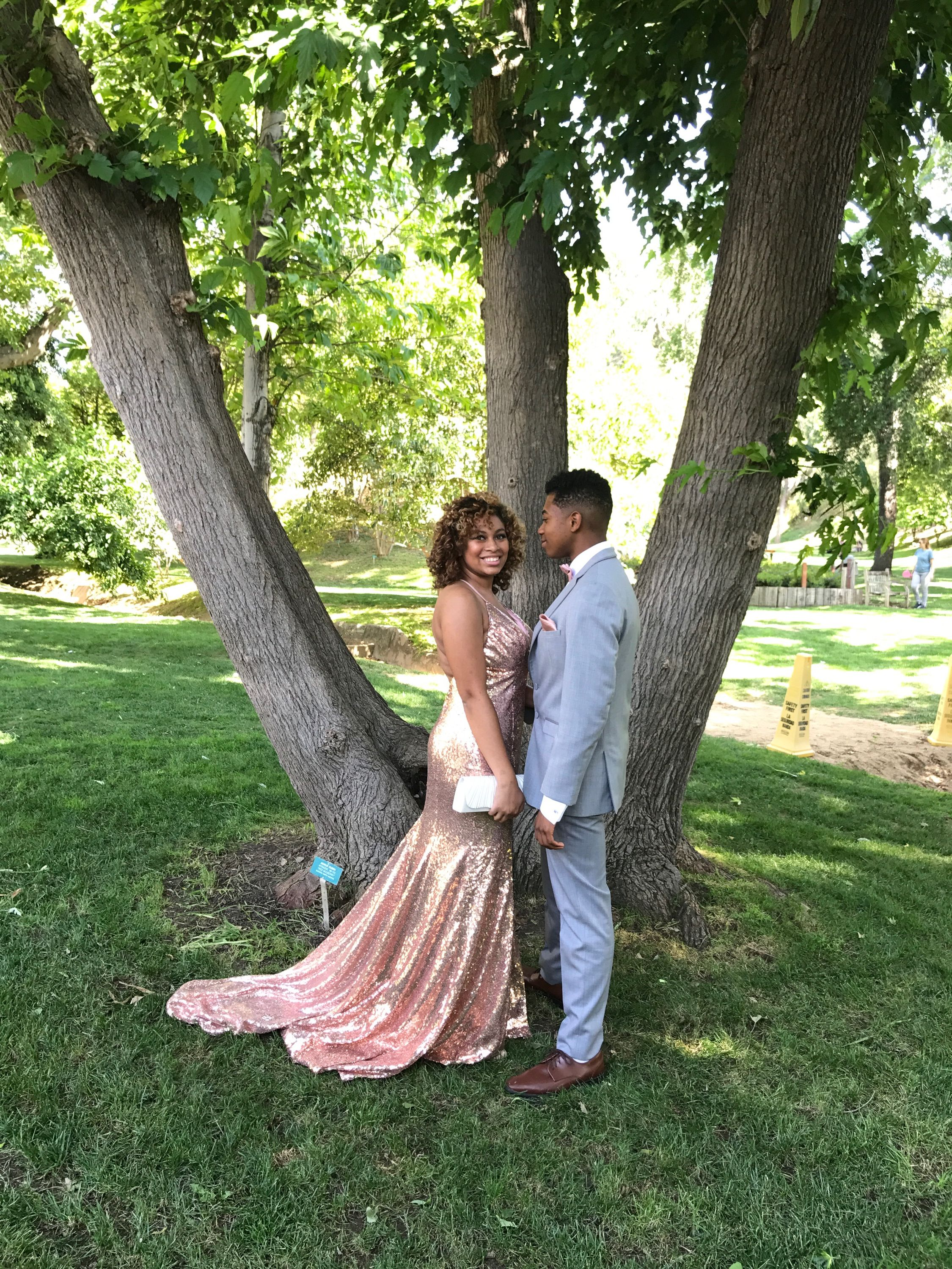 Rose Gold Prom Dress And Couple Catnotkat Instagram Rose Gold Prom Dress Gold Prom Dresses Gold Evening Dresses [ 3000 x 2250 Pixel ]