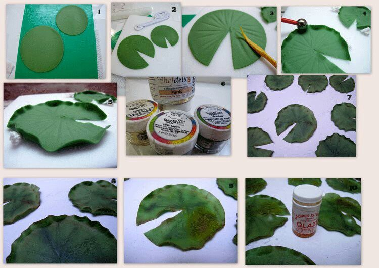 Lotus Leaf Pictorial