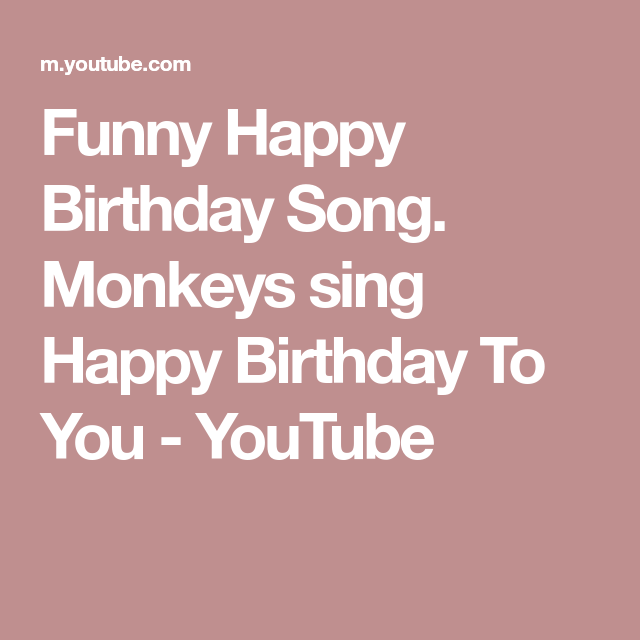 Funny Happy Birthday Song. Monkeys Sing Happy Birthday To