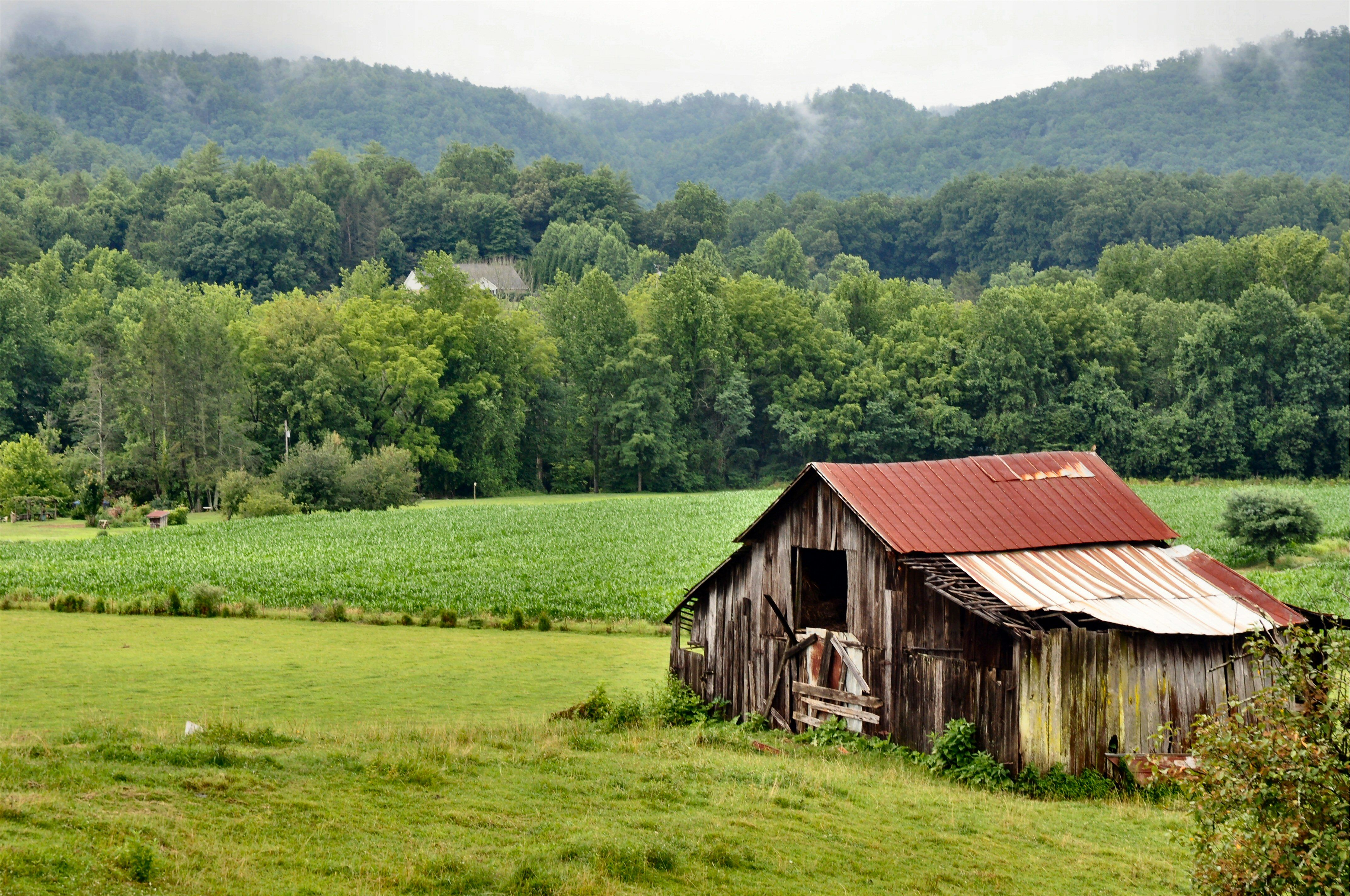 wears valley - tennessee | amazing views | mountains, tennessee