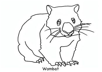 wombat animal colouring page for 2 5 year olds free download available from