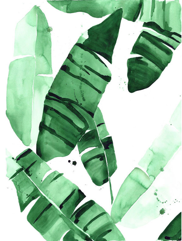 Beverly IV Tropical Banana Leaves Watercolor Giclee Fine Art Print Poster 20 X