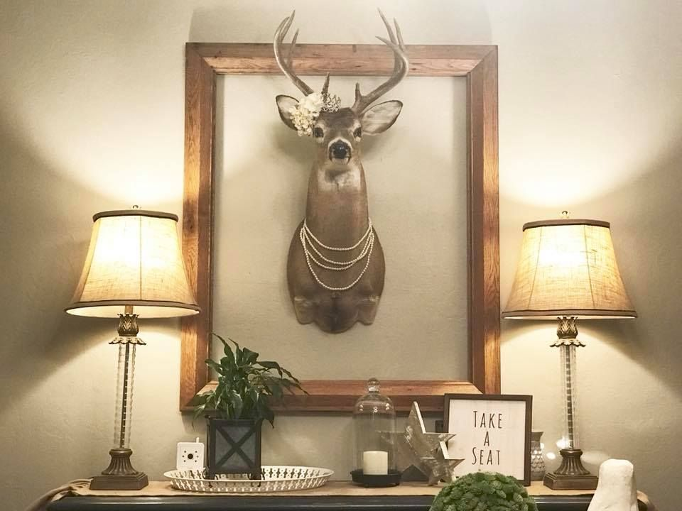 How To Beautify A Stag Head Decorate A Real Mounted Deer Head