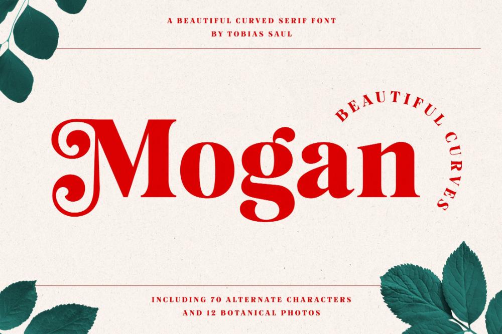 Mogan Font Extras Retro Font Font Guide Lettering