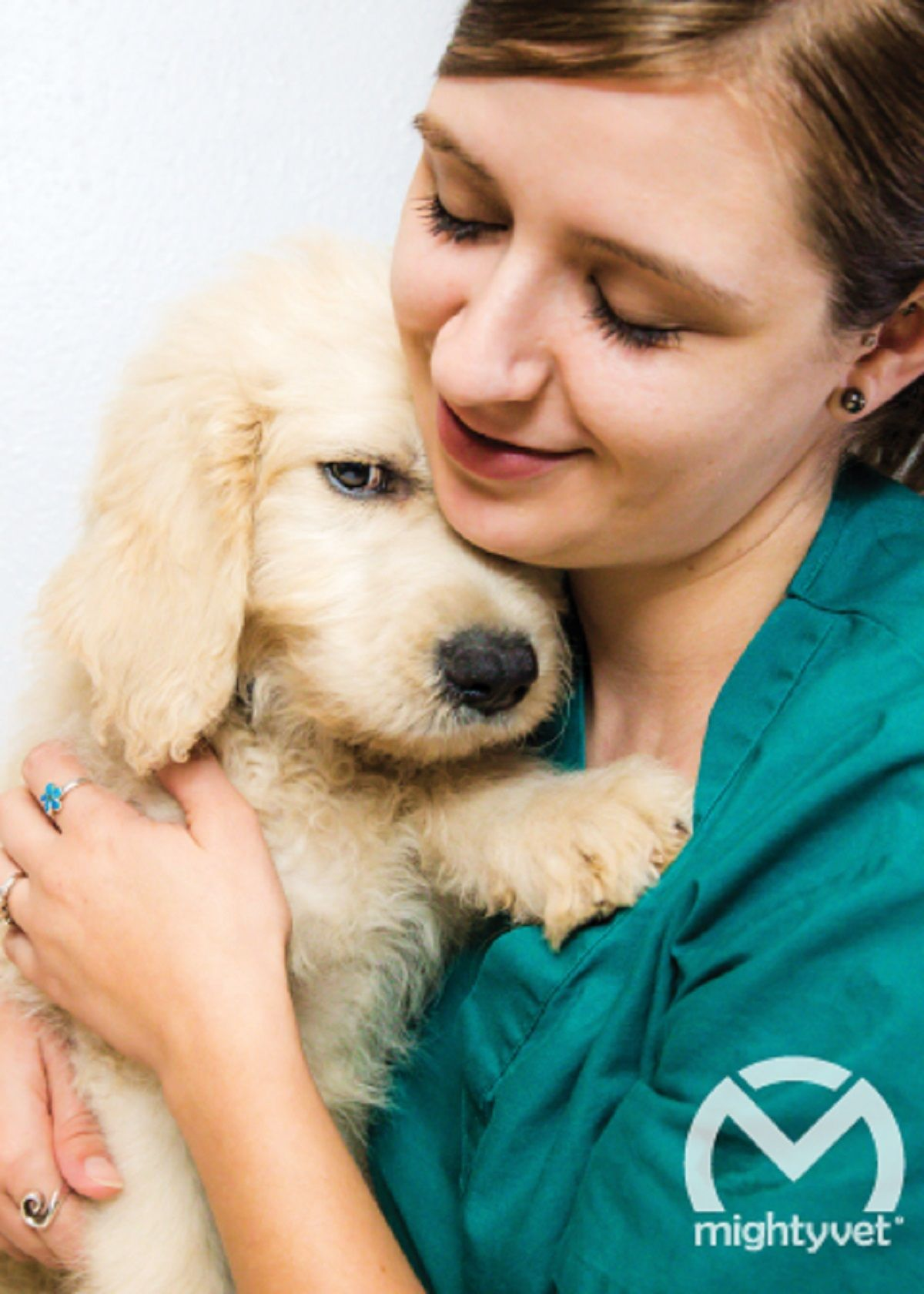 Mightyvet Changing An Industry Pets Veterinary Care Work Culture