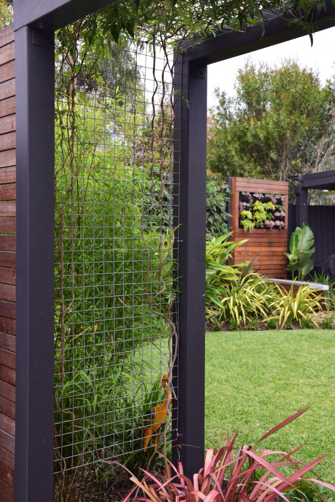 Vertical Garden Design With Gazebo Installation Climbing Frame - Vertical Garden - Water Feature - Bali Inspired Garden -  Botanical Space Landscapes - Landscape Design u0026 Construction - Melbourne,  ...