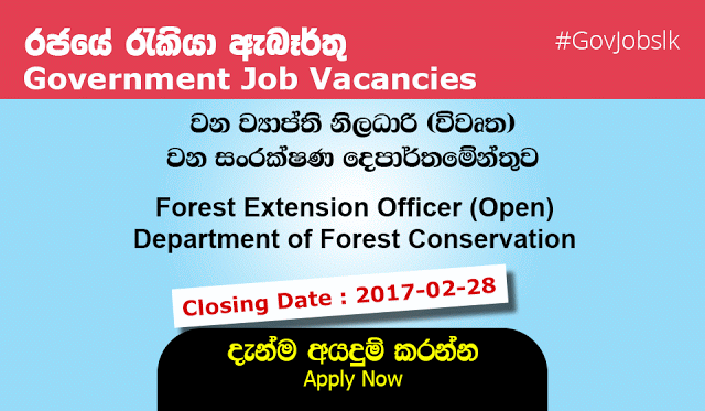 Sri Lankan Government Job Vacancies At Department Of Forest