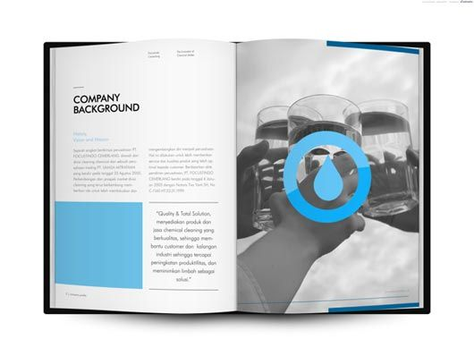 Company Profile Design  Layout  Information  Editorial Graphic