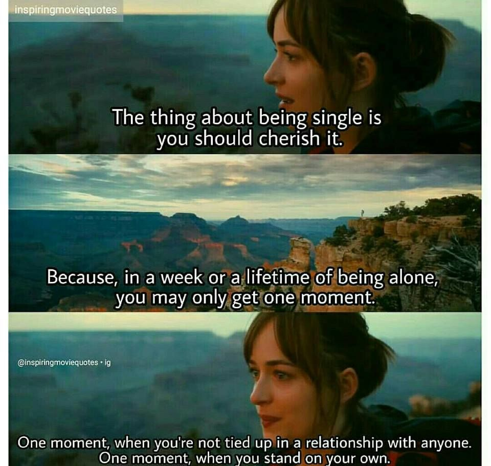 How To Be Single Life Quotes Pinterest Quotes Movie Quotes