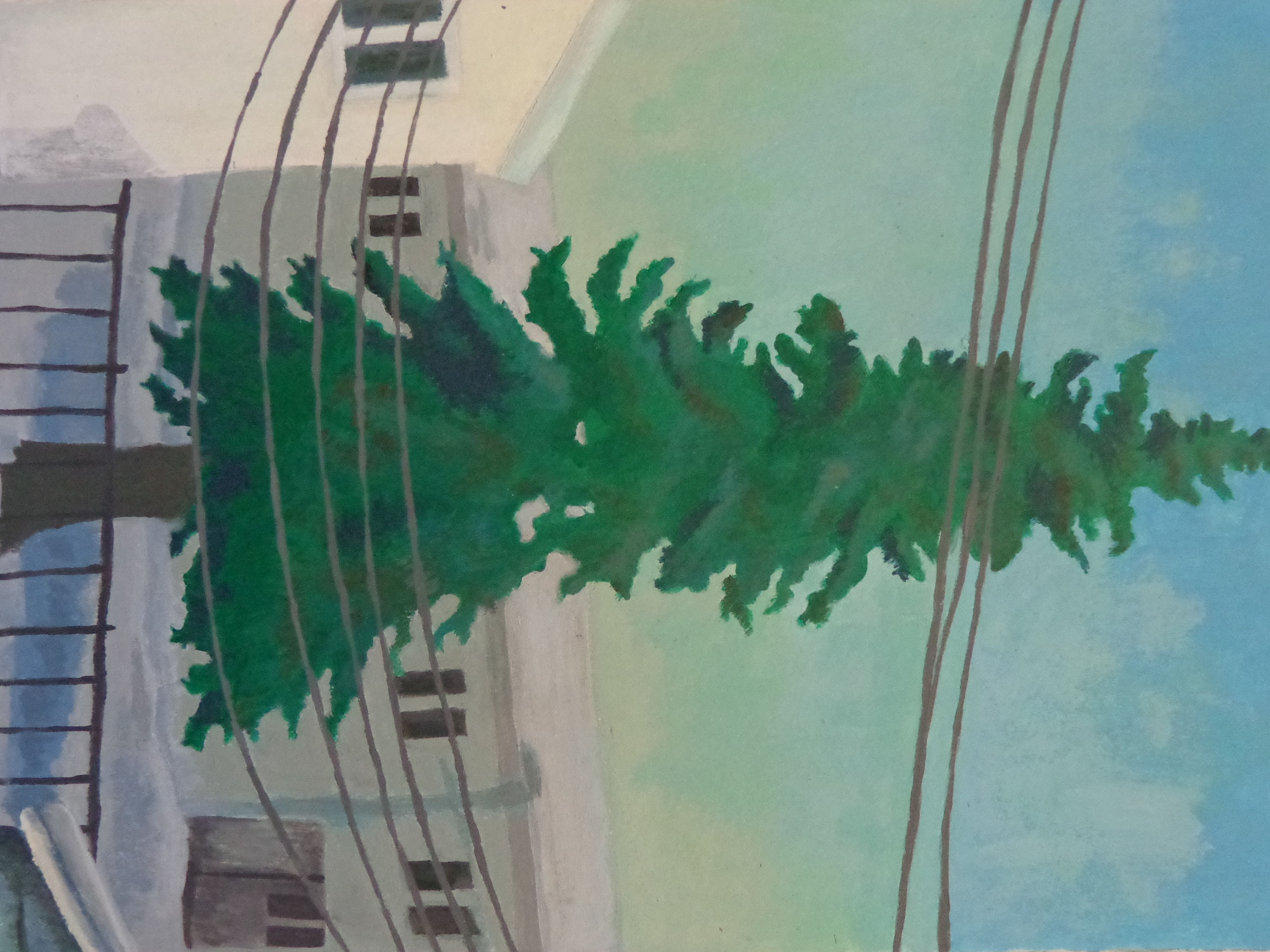 afternoon acrylic painting of pine tree in Fairbanks, AK in early winter. Buy at: https://www.etsy.com/listing/187864363/alaskan-pine-throughout-the-day-4-part