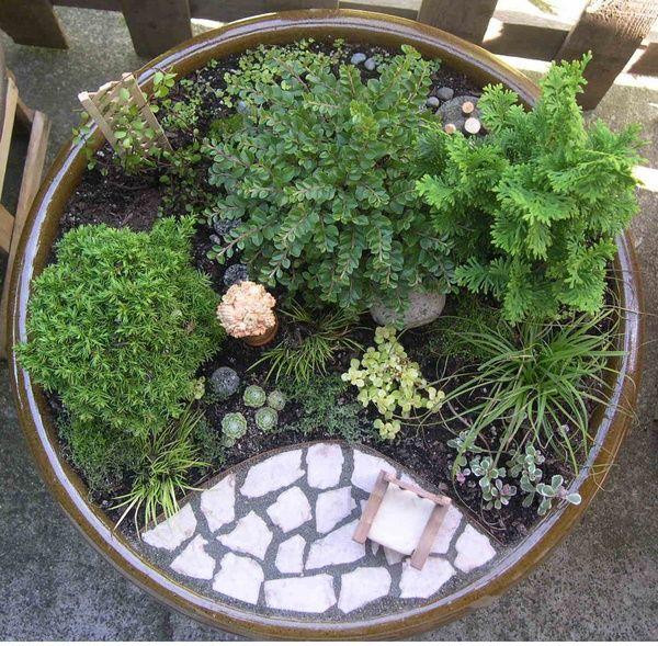 miniature garden in a pot garden-ideas