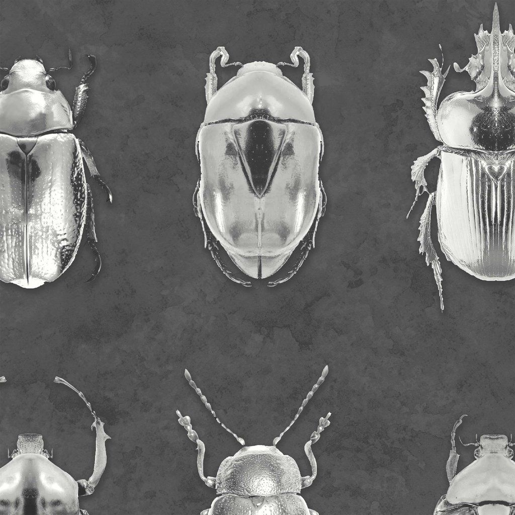 Beetle Jewels Silver Grey Wallpaper Silver Grey Wallpaper Grey