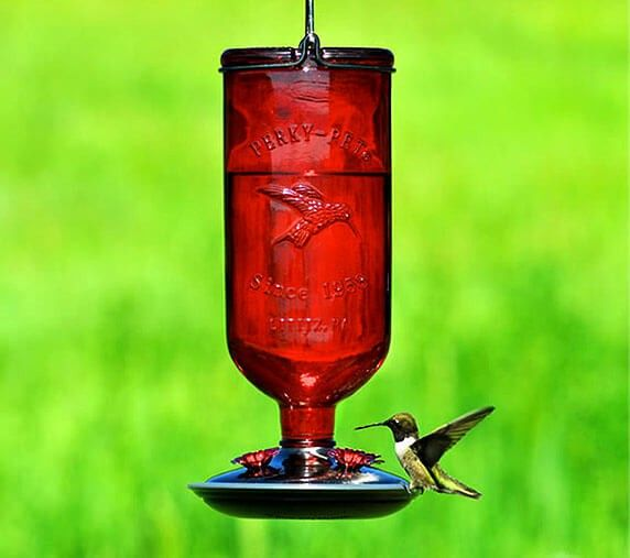 Whimsical Hummingbird Feeder Glass Hummingbird Feeders Humming Bird Feeders Antique Glass Bottles