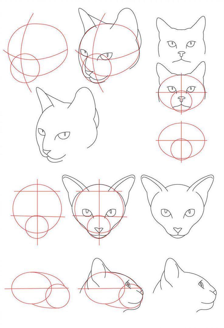 Cat Tutorial  Head von PerianArdocyl  Sketchbook