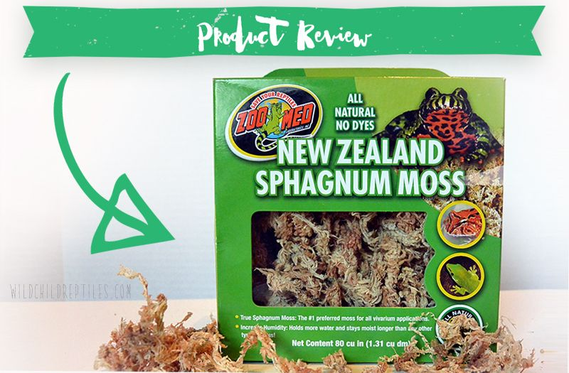 Review : Zoo Med Sphagnum Moss  Reptile moss for terrarium to keeps humidity.