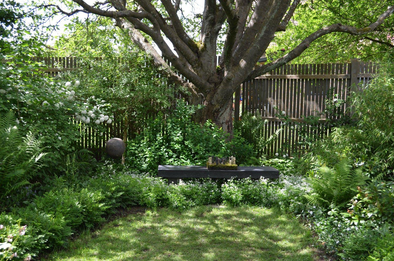 trädgårdsdesign bok Sök på Google Trädgård i skugga