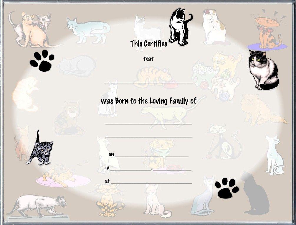 Image result for cat pedigree certificate template Things for - birth certificate template printable