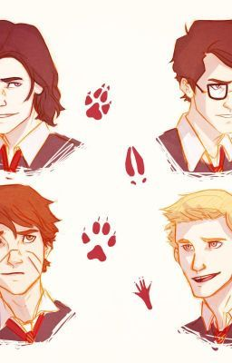 The Marauders Plus One in 2019 | Harry Potter | Harry potter