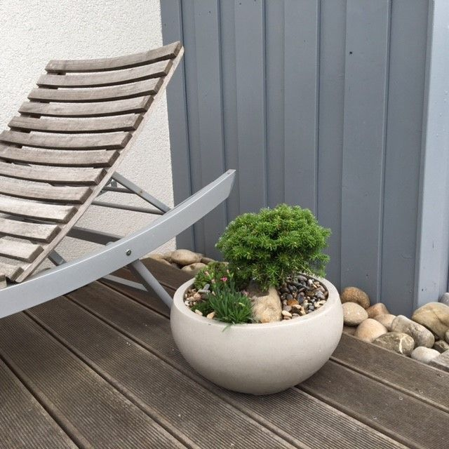 The fibreglass plant bowl ISLA by DECORAS with a terrazzo surface. For more fibreglass planters look at: https://www.planters-online.co.uk/planters-fibreglass-flower-pots/.