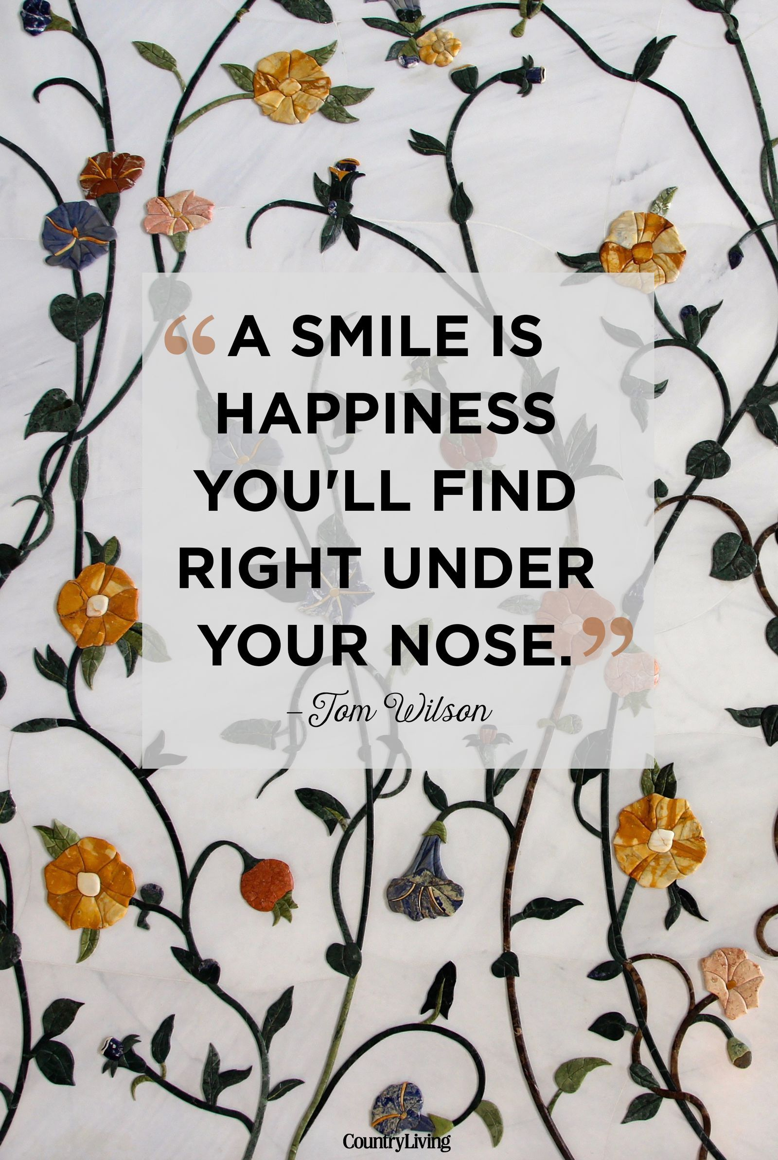 25 Quotes That Are Guaranteed To Put A Smile On Your Face Happy Quotes Smile Smile Quotes Happy Quotes