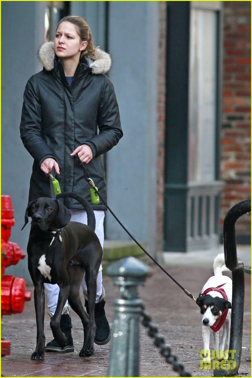 Supergirl S Melissa Benoist Walks Chris Wood S Dog In Canada Melissa Benoist Supergirl Chris Wood