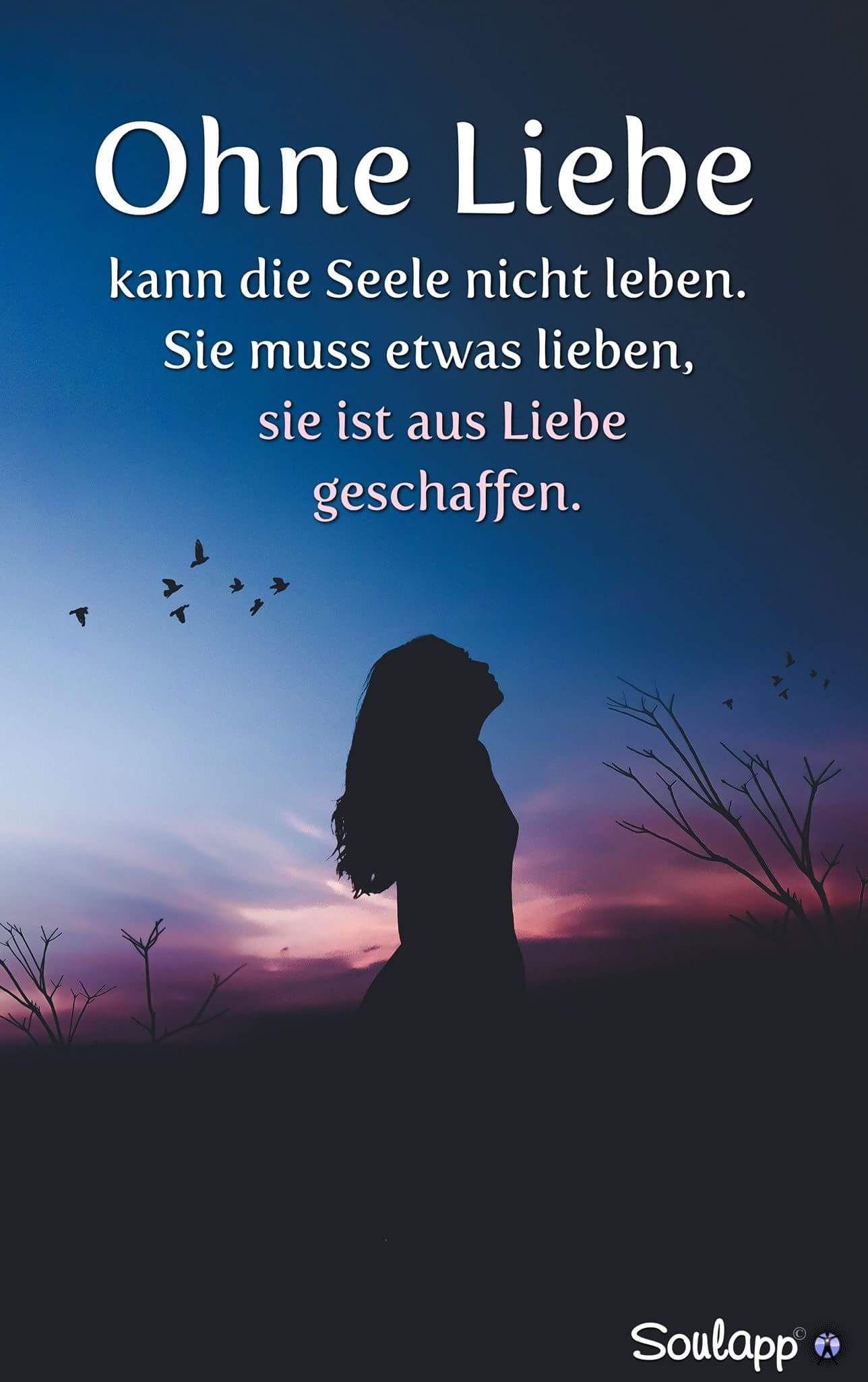 Ohne Liebe// Schmerzhaft 😎 | Quotes. Frases. Zitate