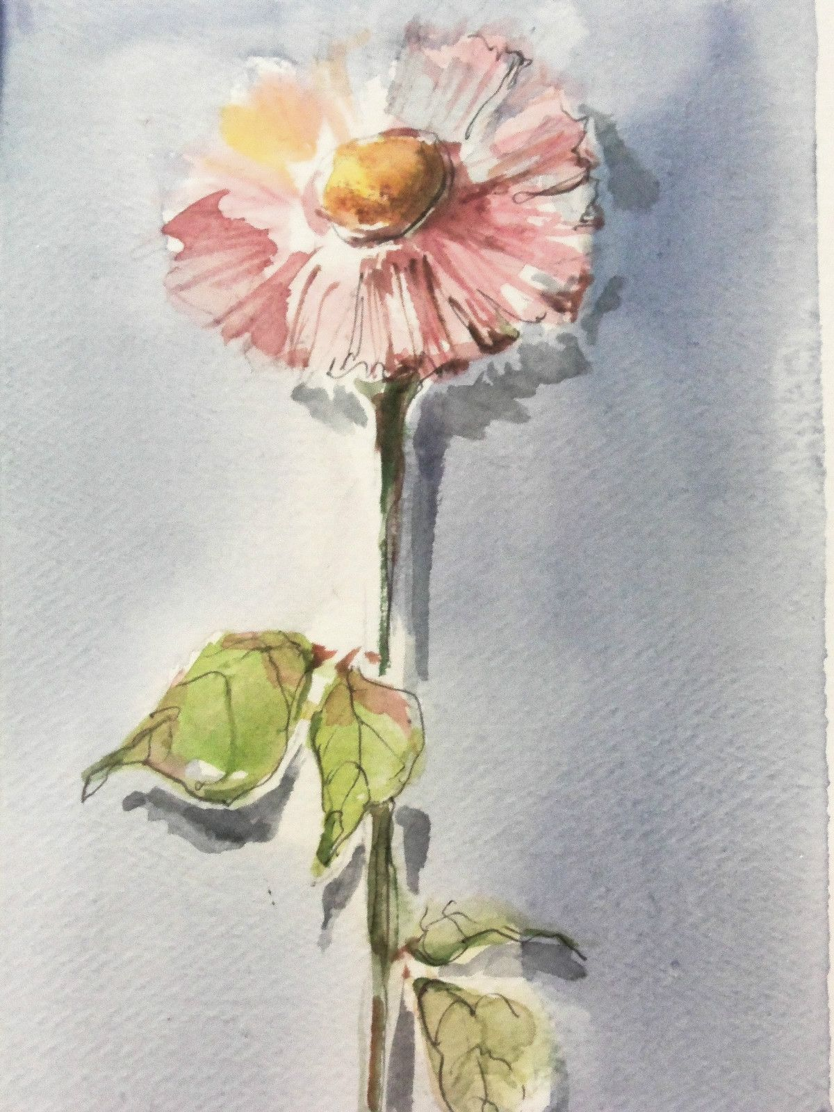 Russian Artist Anna Razumovskaya Original Watercolor Single Flower