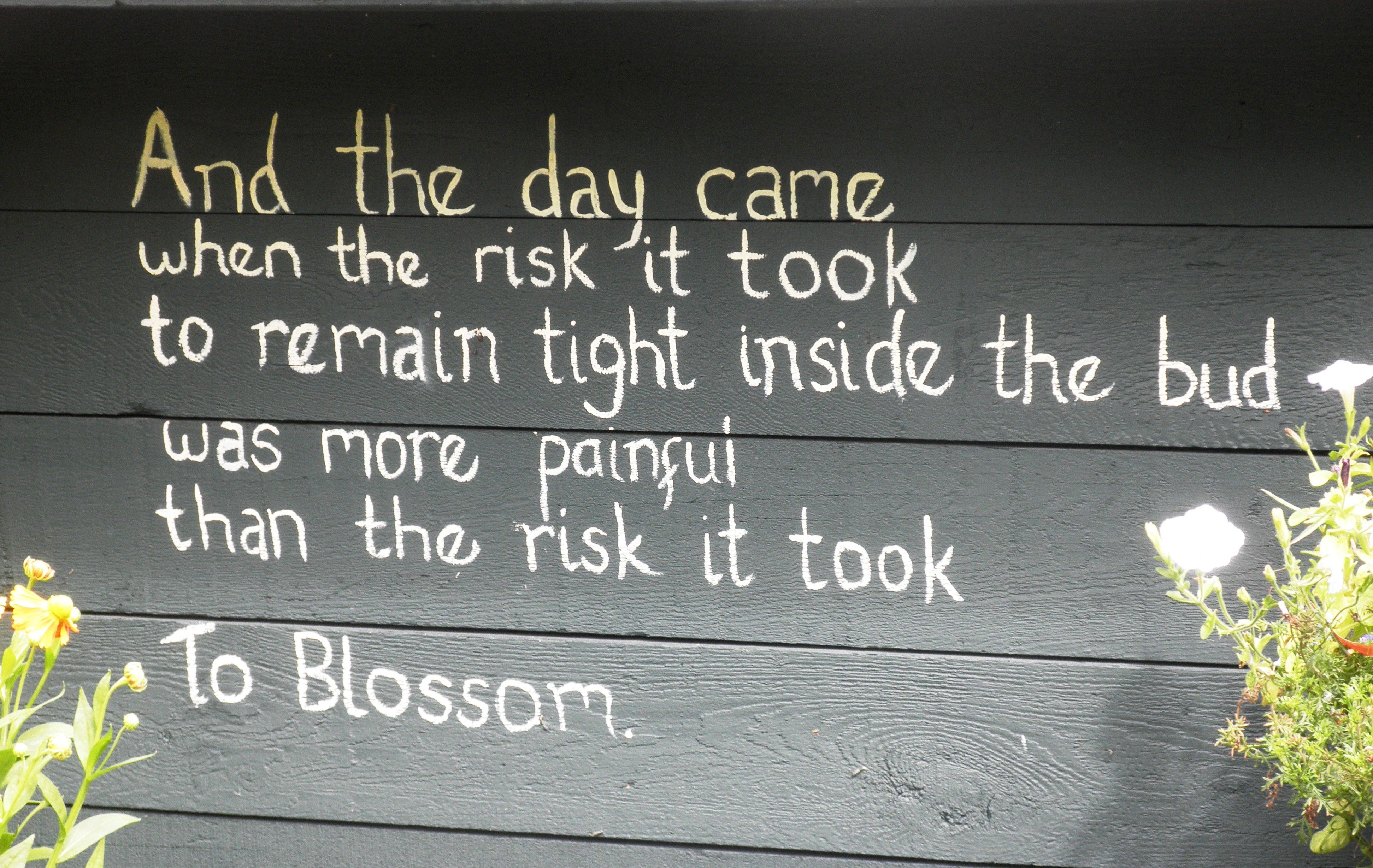 and then the day came when the risk - Google Search
