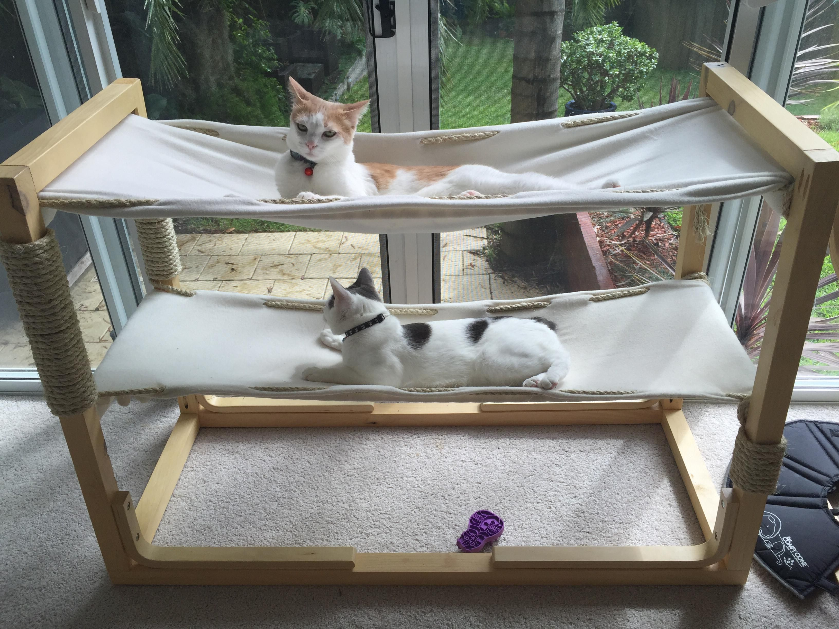 Build Bunk Bed Hammocks for Your Cats Diy cat hammock