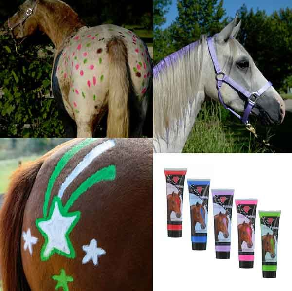 Pony Paint Liquid Chalk Designs Grooming Supplies