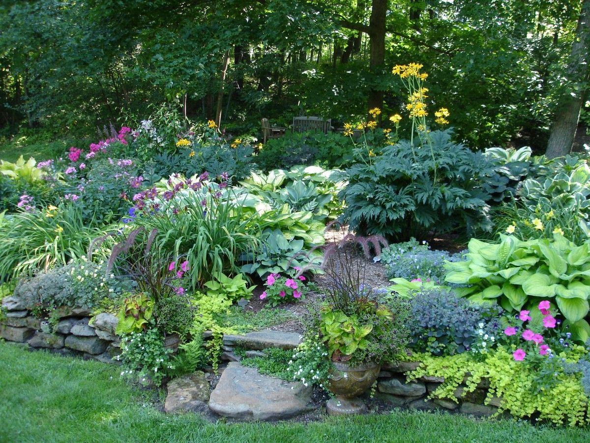 Ten Top Tips For Small Shady Urban Gardens: Shade Garden, Shade