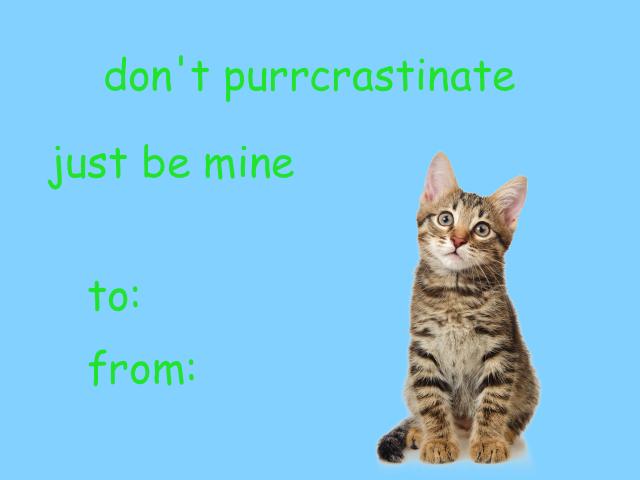 Cat Valentine Valentines Memes Valentines Day Memes Cute Love Memes