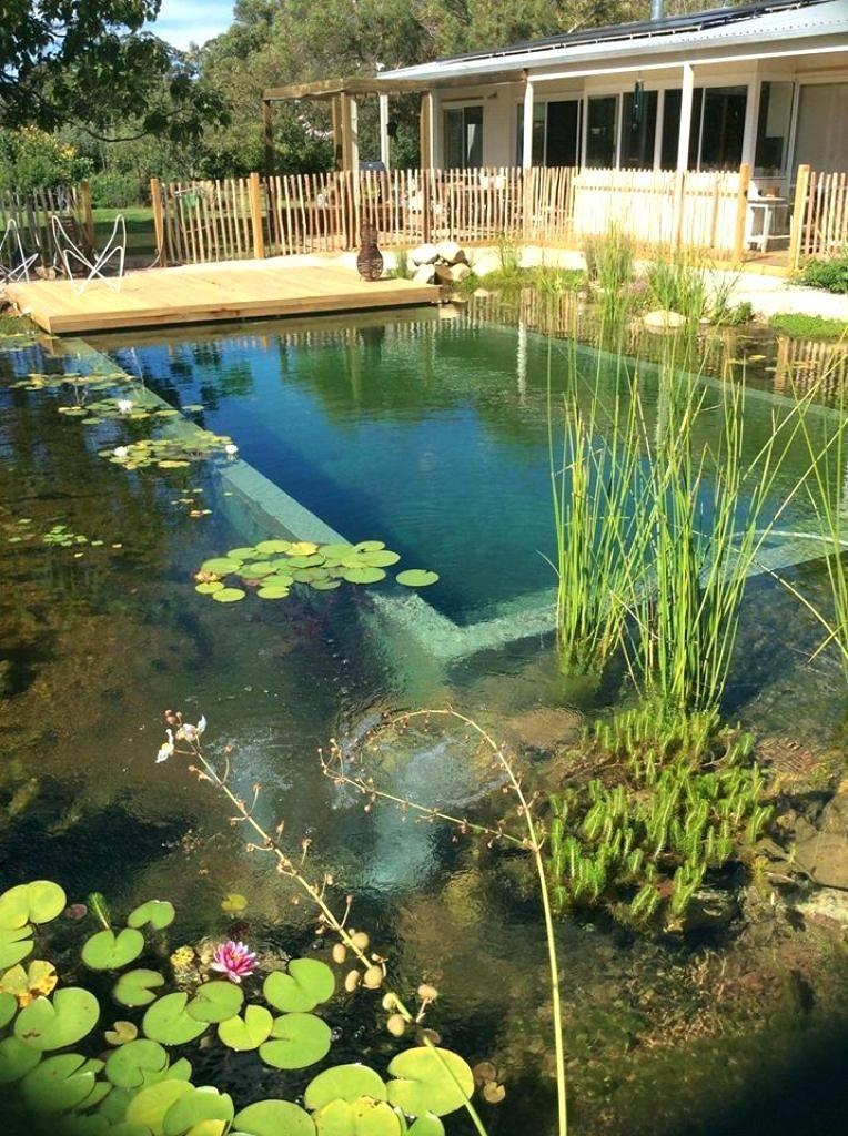Natural Pool Design Natural Swimming Pool Design Best Natural