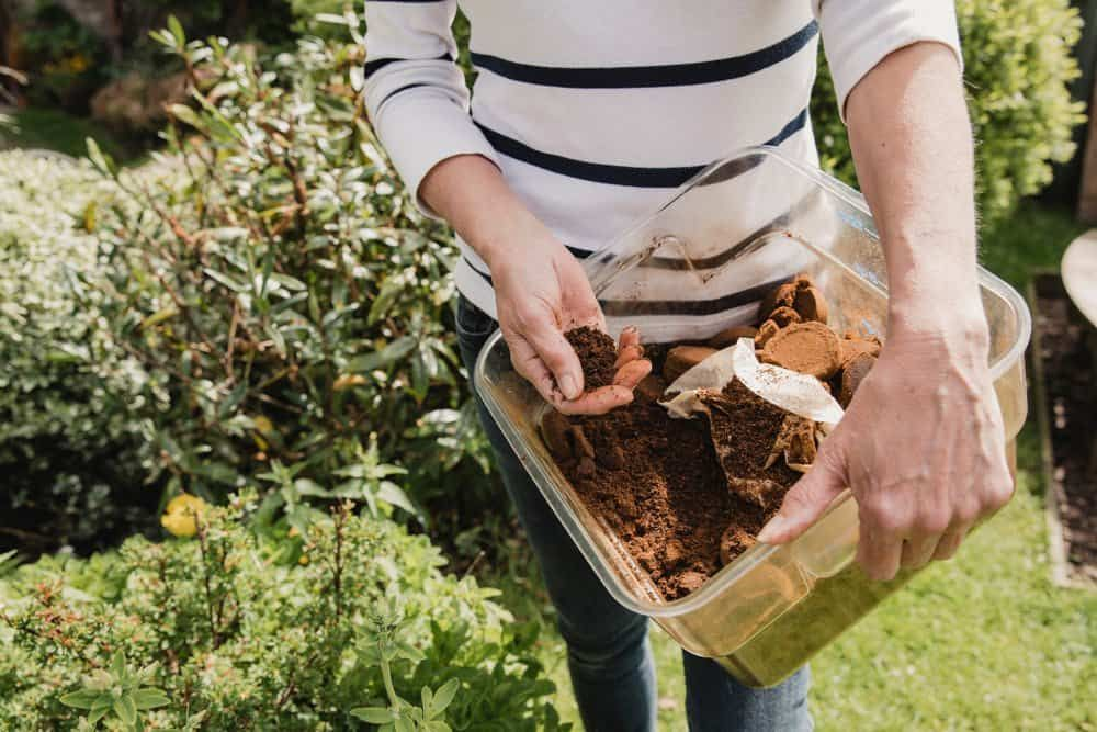 10 Genius Ways To Use Old Coffee Grounds In Your Garden