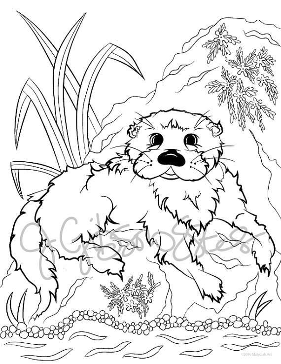 River Otter - Printable Coloring Page | Pinterest | River otter ...