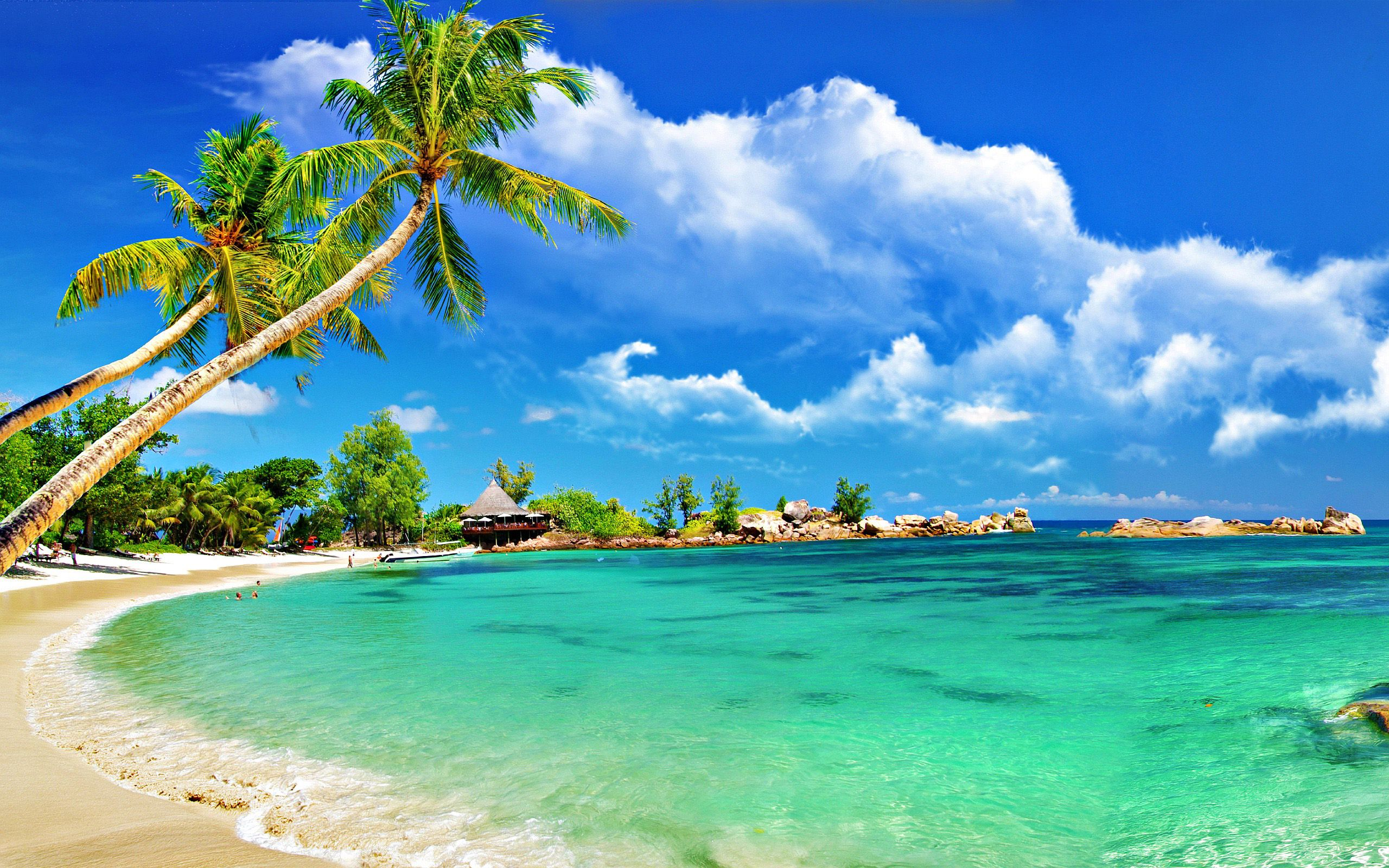 Tropical Island Beach Ambience Sound: Attachment File For High Resolution Beach Wallpaper With