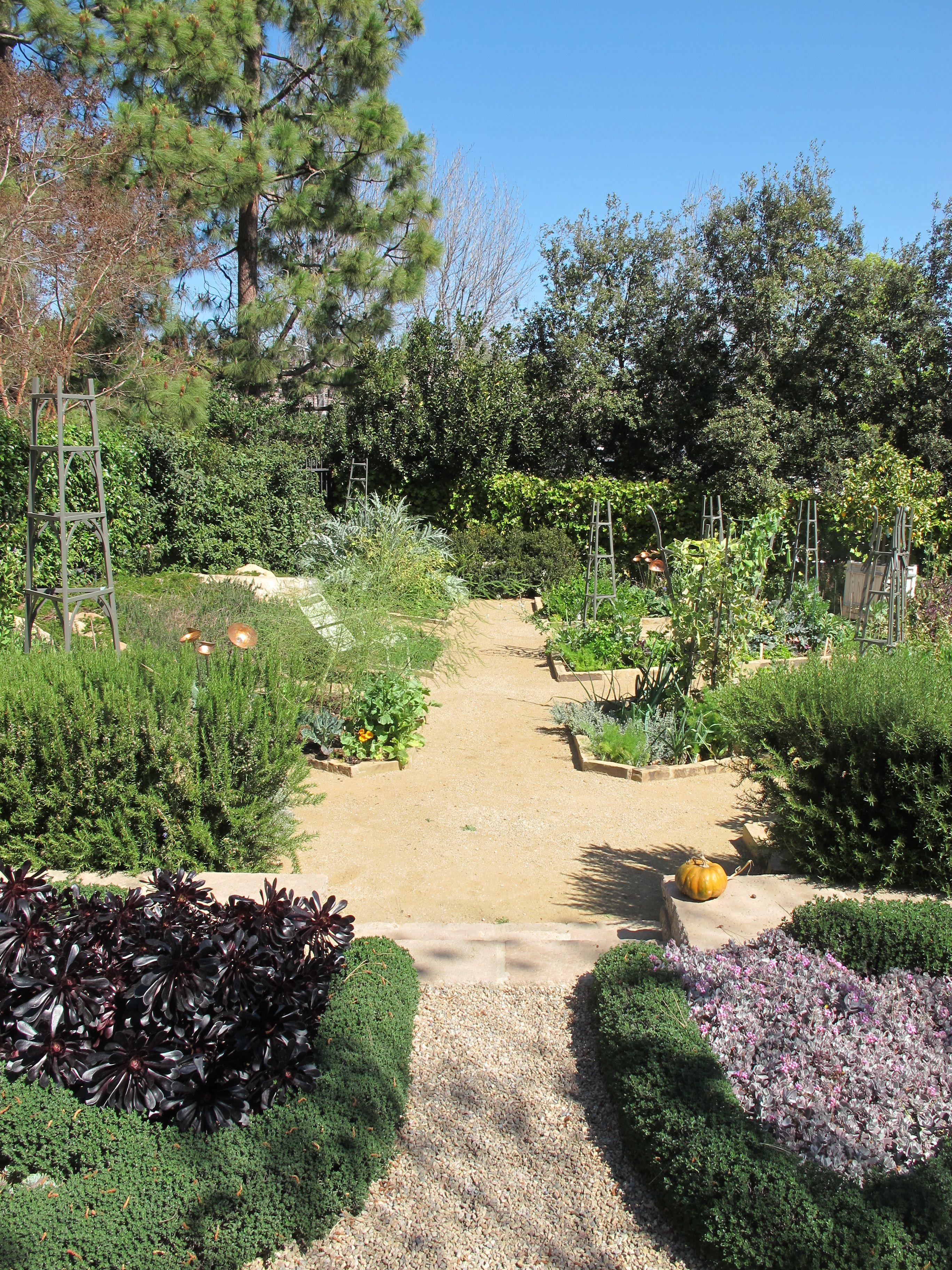 143609720aefe9965147554b32b16d1d - Edgar's Gardening And Tree Service