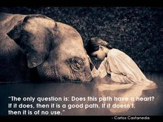 carlos castaneda quotes with images - Google Search