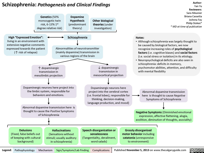 Schizophrenia Pathogenesis and Clinical Findings.jpg   Nursing ...
