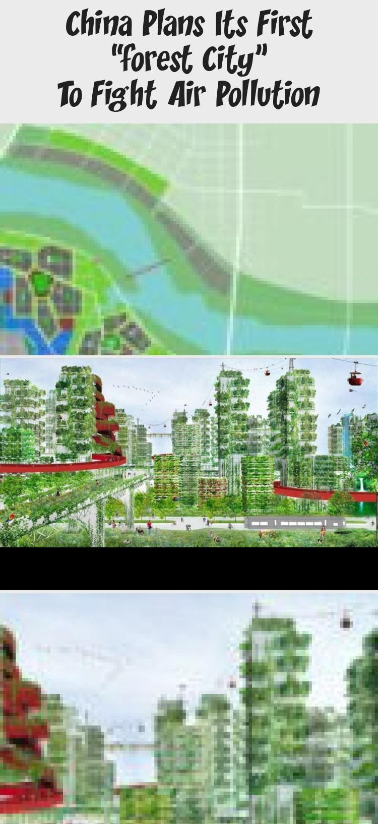 """China plans its first """"Forest City"""" to fight air pollution"""