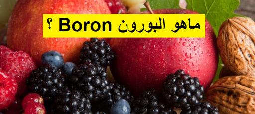 ماهو البورون Boron Food Fruit Boron