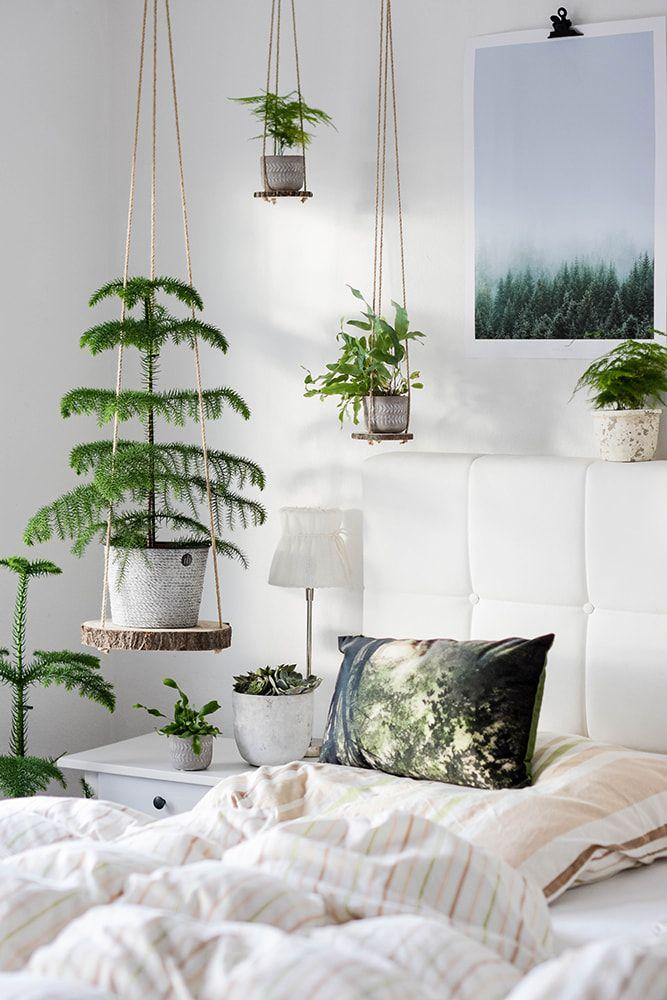 DIY Hängeregale - hole dir deinen Urban Jungle ins Haus