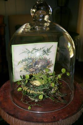 Spring cloche spring pinterest spring showers and for Garden cloche designs
