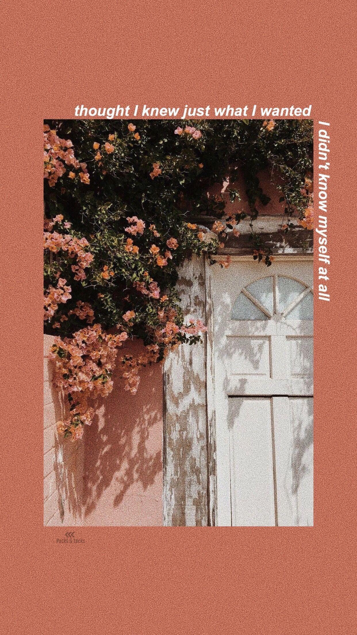 Shawn Mendes Lyrics Wallpaper Because I Had You 壁紙 イラスト