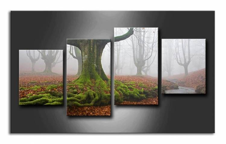 Cuadro composición de fotografía de Juan Antonio Palacios.Bosque y niebla