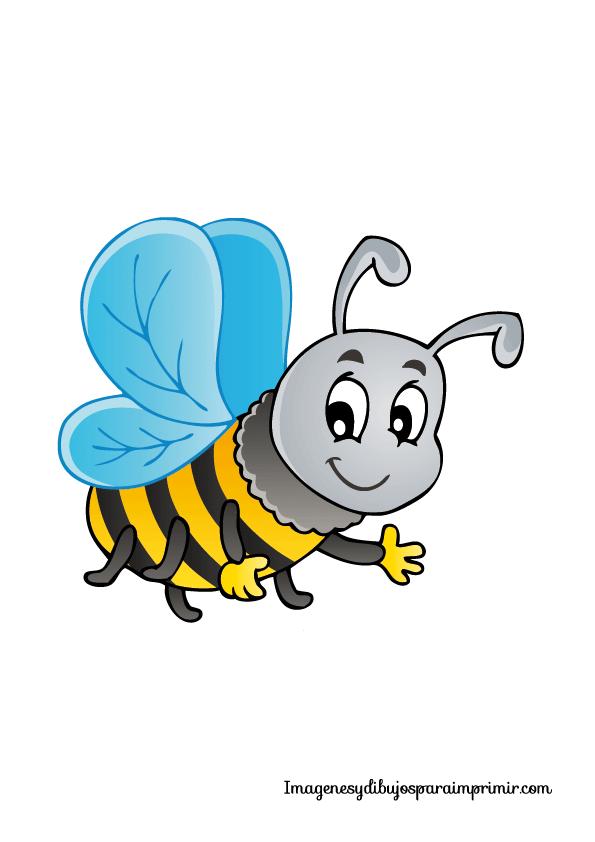 Dibujos de insectos | Bichitos para Pintar | Clip art y Painting