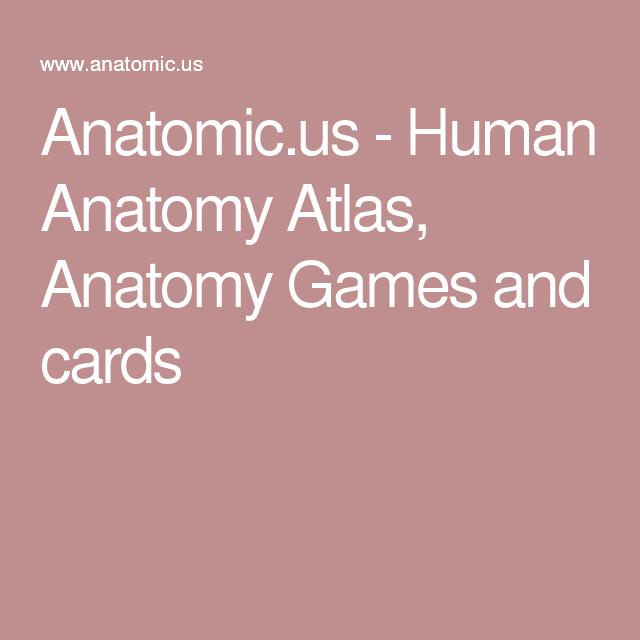Anatomic.us - Human Anatomy Atlas, Anatomy Games and cards | Anatomy ...