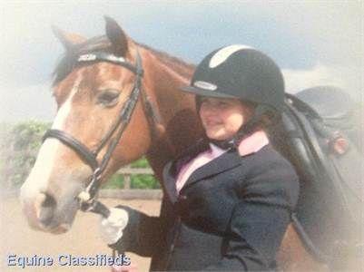 Jazz - 13.2hh bay mare http://www.lardidar.co.uk/Horse/132hh-bay-mare-listing-130.aspx#.Uj2NKVOAUfQ