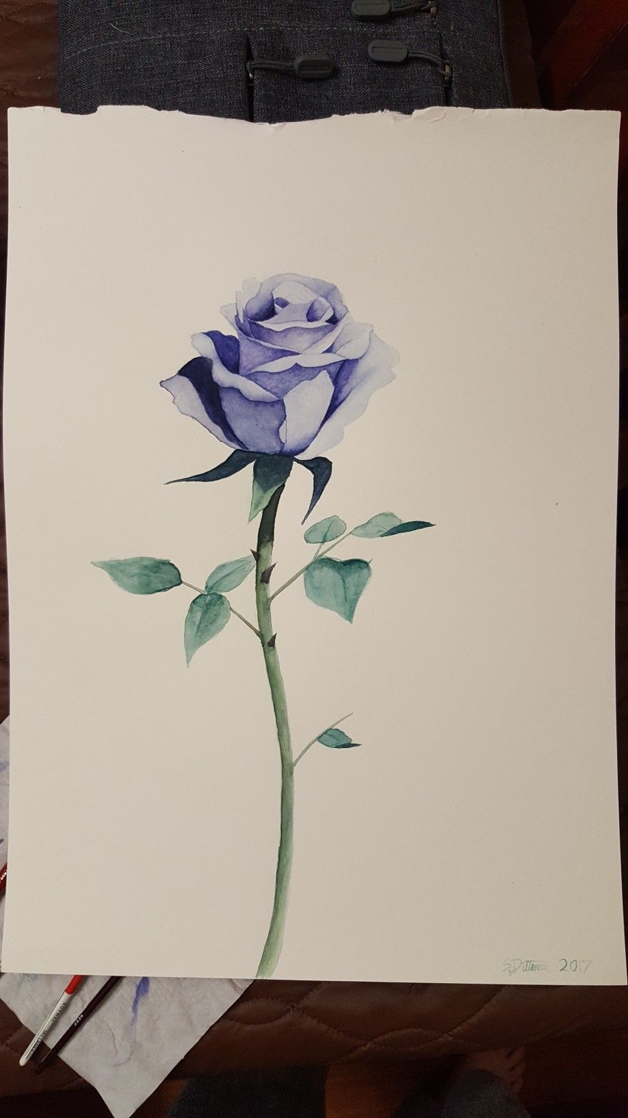 First ever watercolour rose charlotte dawson why i like the first ever watercolour rose charlotte dawson why i like the shading on this is pure amazing the colors are beautiful the leaves are beautiful izmirmasajfo
